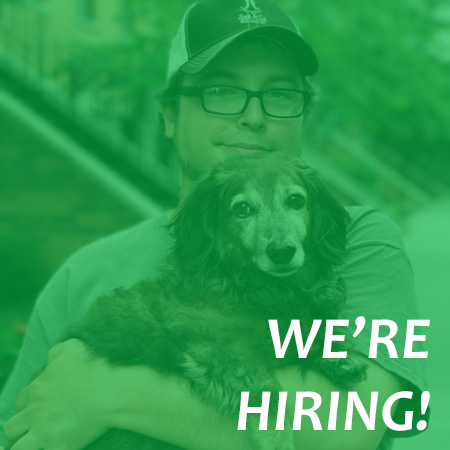 We're Hiring Dog Walkers